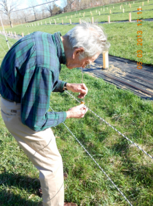 Volunteer Dimitri Stancioff baiting fence with apple scent.