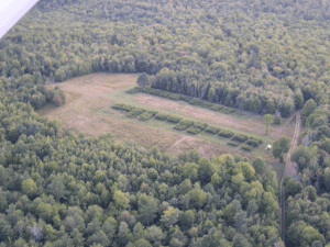 Aerial view of seed orchard at Hartland, ME on September 12, 2015. Photo byLinda Payne.