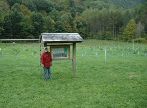 Great Mountain Forest Orchard Photo courtesy of Bill Adamsen