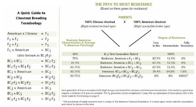resistance_640px